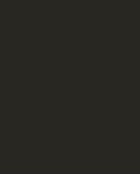 Simogo logo